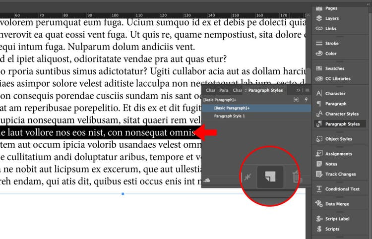 Create an InDesign Paragraph Style from text