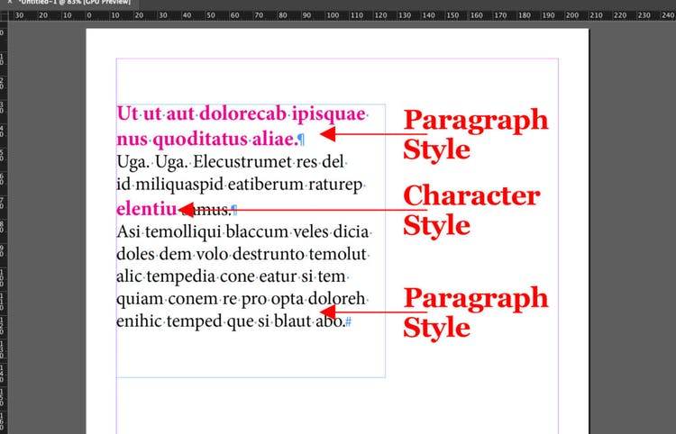 Apply Character Styles and Paragraph Styles correctly
