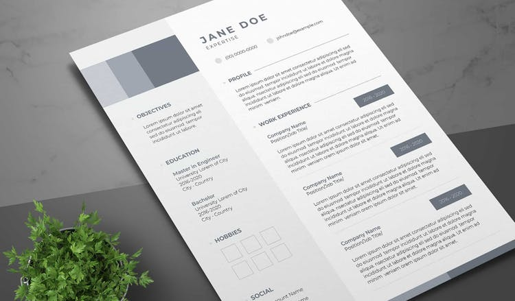 Resume Layout with Blue-Grey Sidebar and Accents