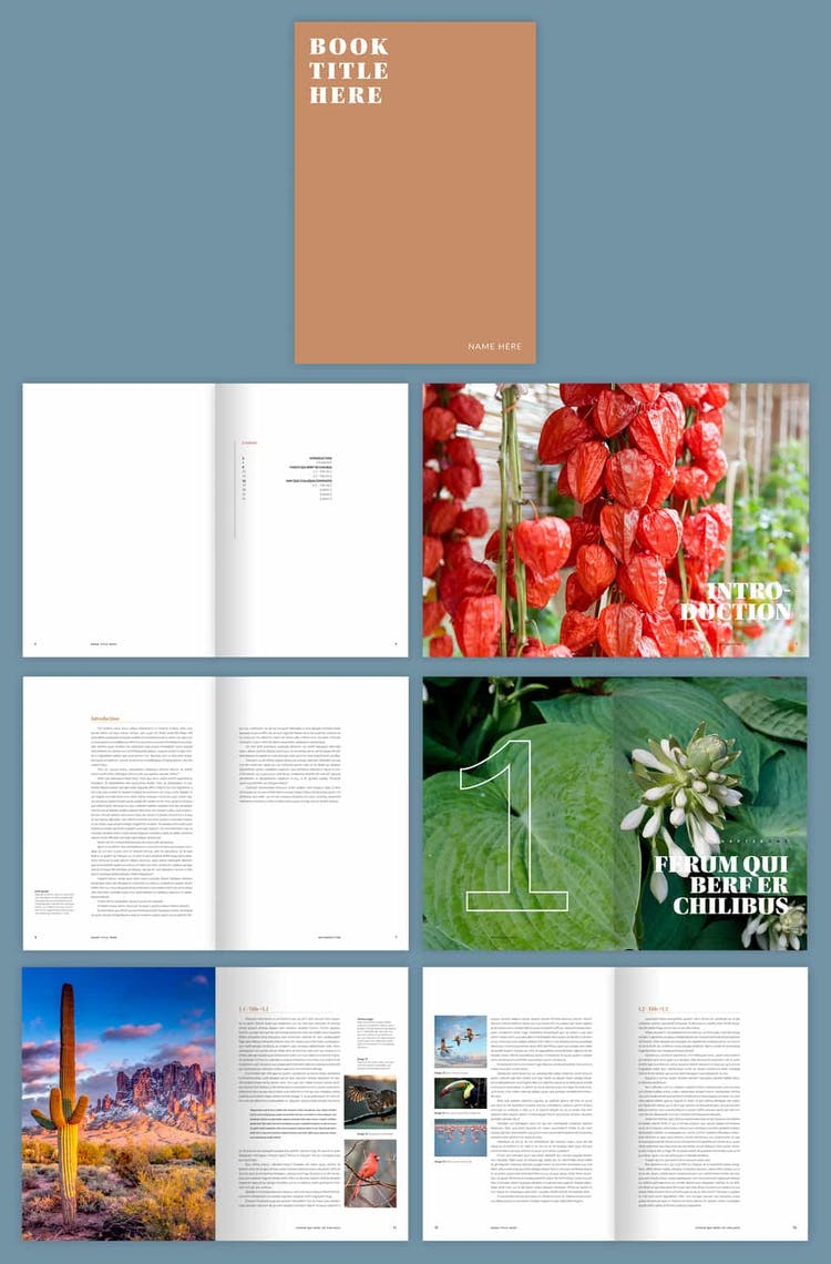 Free InDesign Simple Magazine Template Preview